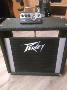 Vox mv 50 with peavy cab