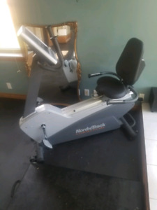Nordic exercise bike
