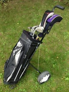 Wilson driver, precision irons, right hand golf cart, tees, bag