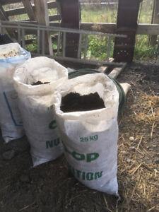 Organic sheep compost/manure