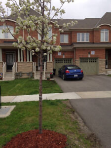 3 Bedroom 2 Story Townhouse with Finished Basement in Milton