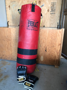 Fitness /Boxing Bag and Gloves