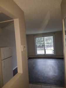 5812 61 STREET 1 Bedroom AVAILABLE IMMEDIATELY