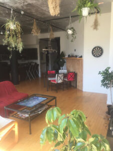 SUBLET JUNE - Loft in the Plateau - 1 bedroom