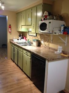 Large 5-6 bdrm semi thorold for rent