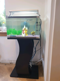 60l fish tank and stand