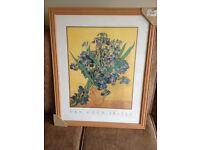 Van Gogh Irises print.