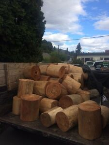 Pine and fir firewood dry ready to burn