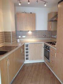 Ensuite Master Double Bedroom in a 2 bedroom apartment fully furnished in city centre - Park Central