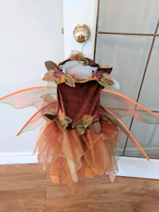 Toddler fall fairy costume