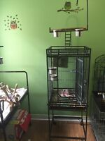 Used bird cage with play top *must sell asap*