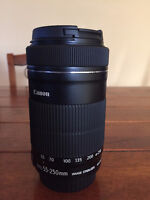Canon EF-S 55-250mm STM Lens