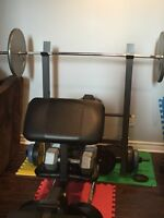 Bench + 450lbs