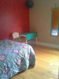 Available Now! Room for Rent Downtown Fredericton!