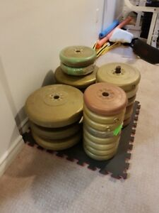 290 Lbs of vinyl weights  Excellent collection of weight Sizes