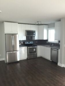 1 bedroom above ground suite in new Kirshner Mtn family home
