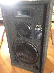 1x PRO AUDIO 250 Watts Studio Monitor Speaker —  28''x16''x12''