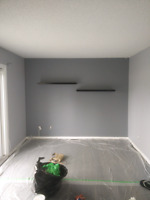 Young experienced Painter, excellent craftsmanship.Free estimate