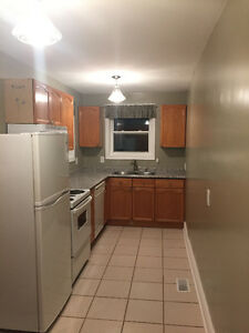 Newly Renovated 3 bedroom Student Apartment
