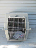 Animal crate 34 inches long x 26 inches high x 22 wide $58