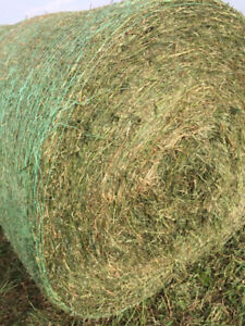 57 4x5 round bales with quality report