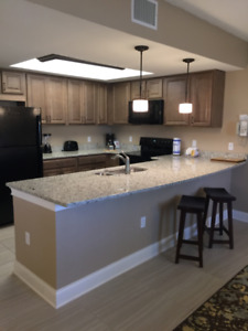 Awesome freshly updated unit at Orange Lake Orlando Week 12