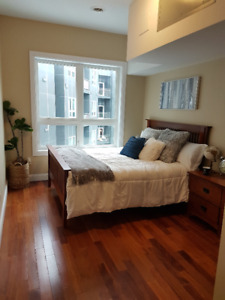 Rent-By-the-Bed Luxury Student Condo Apartment!