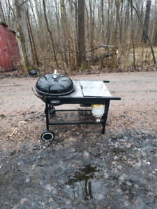 weber charcoal grill with propane igniter