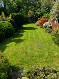 Mow&hoe garden services only professional work high standards