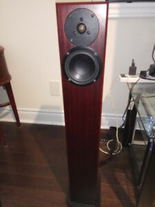 Mahogany Color Pair of Totem Arros Speakers