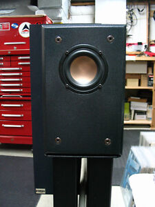 Zaph Audio - Hi-Vi B3S single driver speaker system