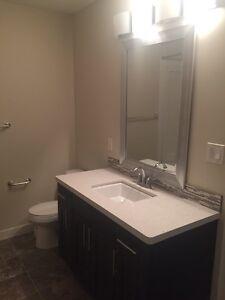 2 bedrooms suite included utilities-Harbour landining  Regina Regina Area image 6