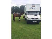 Iveco 3.5t horse box excellent condition