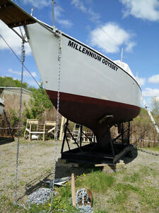 Millennium Odyssey wants a new owner!