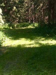 Family camping in private yard close to Sylvan Lake available.