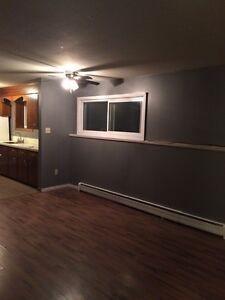 3 BR Westside - Heat & Lights Included