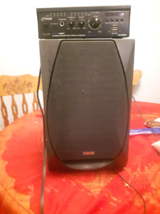 Speaker and blue tooth amp