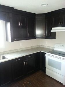 3 bed 2 bath $1,400 for rent