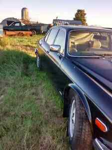 1986 Jaguar XJ12  Kawartha Lakes Peterborough Area image 5