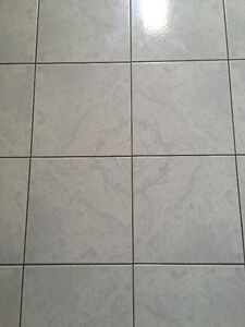 WANTED : Specific Tiles 12 inch by 12 inch, from late 1980s