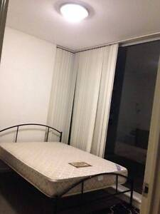 Strathfield double room is now able to rent Strathfield Strathfield Area Preview