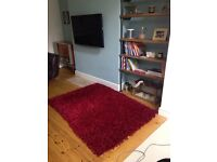 Large textured red rug Cost £220
