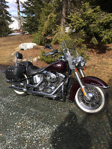 Deluxe softail with extras