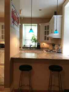 Stunning One bedroom with New washer and dryer Cambridge Kitchener Area image 1