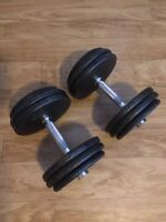 55lbs Adjustable Dumbbells