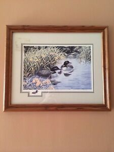 Framed duck picture