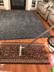 KING CARPET SHAMPOO AND STEAM CLEANING in MISSISSAUGA BRAMPTON