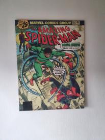 Retro Spiderman Canvas
