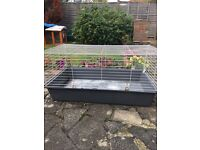 2 rabbits , hutch and indoor cage