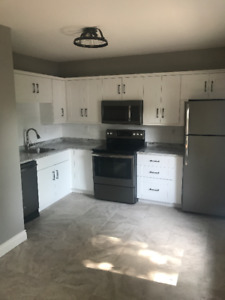BRAND NEW Executive Apt - Large 3 Bedroom
